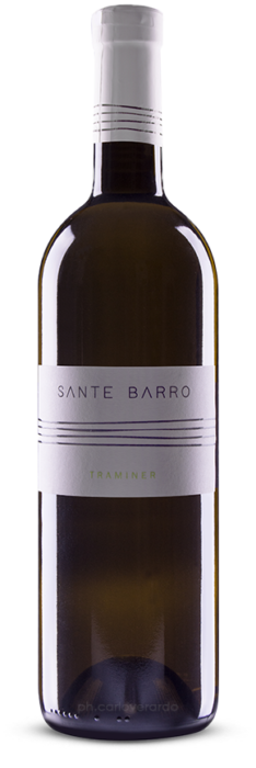 traminer-barro